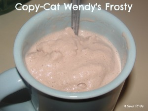 4 Sons 'R' Us: Copy-Cat Wendy's Frosty