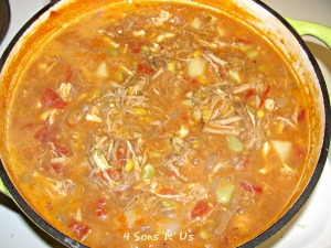 4 Sons 'R' Us: Brunswick Stew