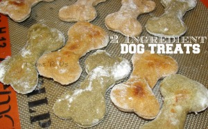 2 Ingredient Dog Treats