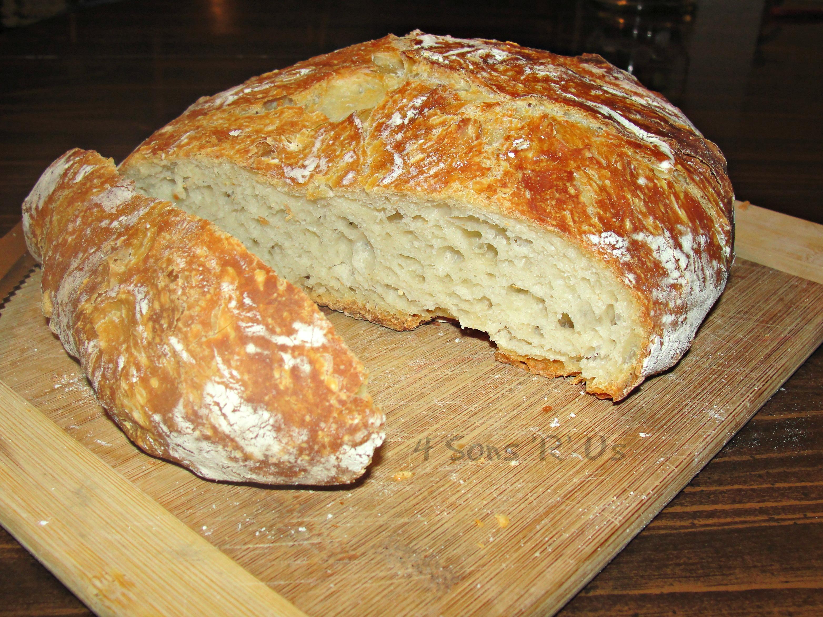 No Knead Crusty Artisan Bread - 4 Sons 'R' Us