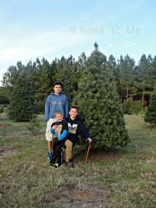 The Sons' Christmas Tree 2014