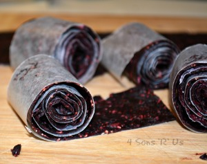 Homemade Fruit Roll Ups 2