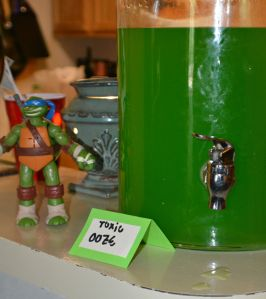 Ninja Turtle Party 6