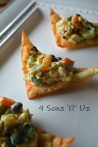 Southwestern Egg Roll Dip with Wonton Chips 2